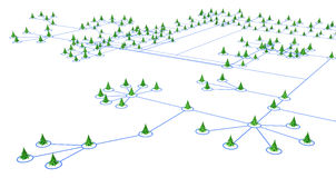 Fir Tree Lines. Fir trees 3d models connected by lines, over white Stock Photos