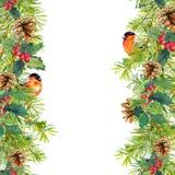 Fir tree, mistletoe, red finch bird. Christmas seamless border. Watercolor Royalty Free Stock Photo