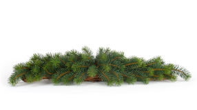 Fir tree natural background - christmas Royalty Free Stock Photo