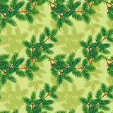 Fir tree pattern. Vector seamless pattern with fir tree Stock Images