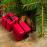 Fir tree with pinecones and decorative boxes Stock Photos