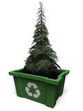 Fir tree in recycle bin. Fir tree inside a green recycle bin with recycle symble on it Stock Images