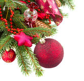 Fir tree with red christmas decorations and cones. Fresh green fir tree and red christmas decorations with cones  on white background Stock Images