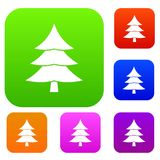 Fir tree set collection. Fir tree set icon in different colors isolated vector illustration. Premium collection Stock Images