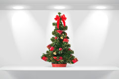Fir tree on the shelf. Christmas fir tree on the shelf Royalty Free Stock Photos