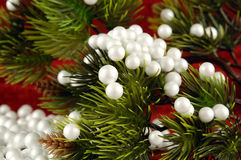 Fir tree and snow Stock Photography