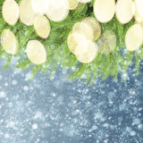 With fir tree and snow Stock Photos