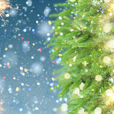 With fir tree and snow. Christmas background with fir tree, lights bokeh and falling snow Stock Photography