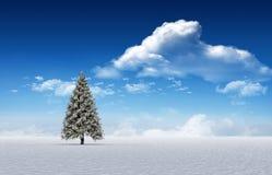 Fir tree in snowy landscape. Digitally generated fir tree in snowy landscape Stock Photos
