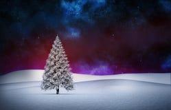 Fir tree in snowy landscape. Digitally generated Fir tree in snowy landscape Royalty Free Stock Photography