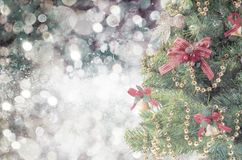 Fir-tree spruce branch with bokeh unfocused sparkles decor lights royalty free stock images