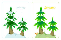 Fir tree in summer and winter. Illustration of two fir trees in the winter and in the summer of the same tree Stock Photography