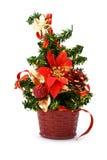 Fir-tree to Christmas Stock Photos