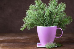 Fir-tree twigs in a mug on old wooden table Stock Image