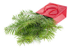 Fir-tree twigs in red paper-bag isolated on white Stock Image