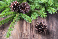Fir tree twigs with three cones on  wood background Stock Photo