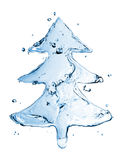 Fir tree from water splash Stock Photos