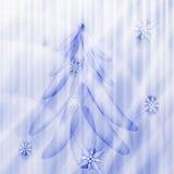 Fir tree on winter background Stock Photo