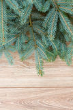 Fir tree on wooden background Royalty Free Stock Photos
