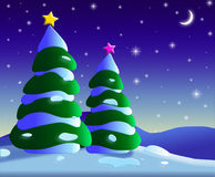 Fir trees. An illustration of Christmas trees at night Royalty Free Stock Images