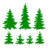 Fir-trees. Set of vector Fir-trees silhouettes Royalty Free Stock Photo