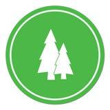 Fir Trees flat icon. Vector illustration Stock Photo