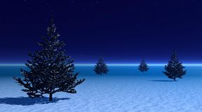 Fir trees among fog by evening. Four fir trees on snow among little fog by evening night Royalty Free Stock Photo