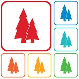 Fir Trees forest. Flat icon Stock Photography