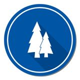 Fir Trees forest. Flat icon Stock Photo