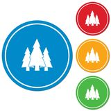Fir Trees forest icon Royalty Free Stock Image