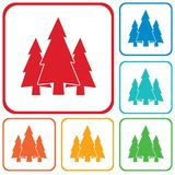 Fir Trees forest icon. Fir Trees forest flat icon Stock Photography