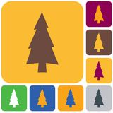 Fir Trees icon. Fir Trees forest flat icon Royalty Free Stock Photo