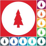 Fir Trees icon. Fir Trees forest flat icon Stock Images