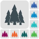 Fir Trees forest icon. Fir Trees forest flat icon Royalty Free Stock Photo