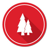 Fir Trees forest. Flat icon Royalty Free Stock Photo