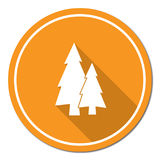 Fir Trees forest. Flat icon Royalty Free Stock Images