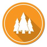 Fir Trees forest icon. Fir Trees forest flat icon Stock Photo