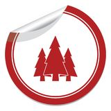 Fir Trees forest icon. Fir Trees forest flat icon Stock Photos