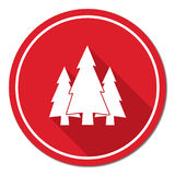Fir Trees forest icon. Fir Trees forest flat icon Stock Images