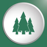 Fir Trees forest icon. Fir Trees forest flat icon Stock Image