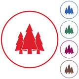 Fir Trees forest icon Stock Photo