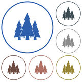 Fir Trees forest icon. Fir Trees forest flat icon Royalty Free Stock Image