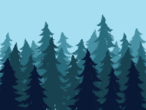 Fir Trees Forest Silhouettes. Stylized silhouettes of fir trees forest illustration Royalty Free Stock Photo