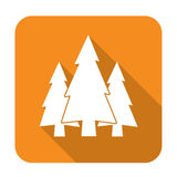 Fir Trees group icon. Fir Trees group flat icon Royalty Free Stock Photos