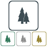 Fir Trees icon. Fir Trees flat icon on the map pointer Stock Photography
