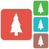 Fir Trees icon. Fir Trees forest flat icon Stock Photos