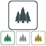 Fir Trees icons set Royalty Free Stock Image