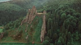 Fir trees rocks nature shooting from quadrocopter. Hd nature stock video