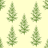 Fir trees seamless pattern. Abstract seamless christmas and new year background with spruce trees Stock Photography