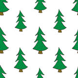 Fir trees seamless pattern Stock Images